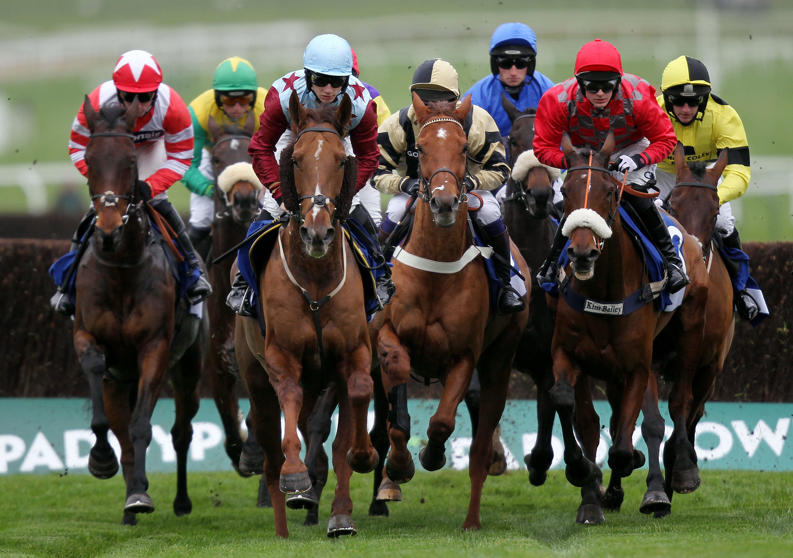 A Few Myths To Be Discussed Regarding Horse Racing
