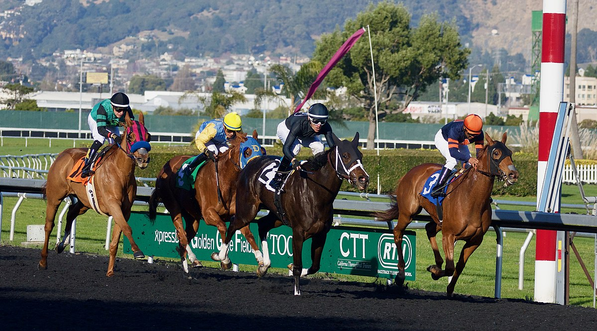 Discover Basic Things That You Must Gather About Horse Racing Programs