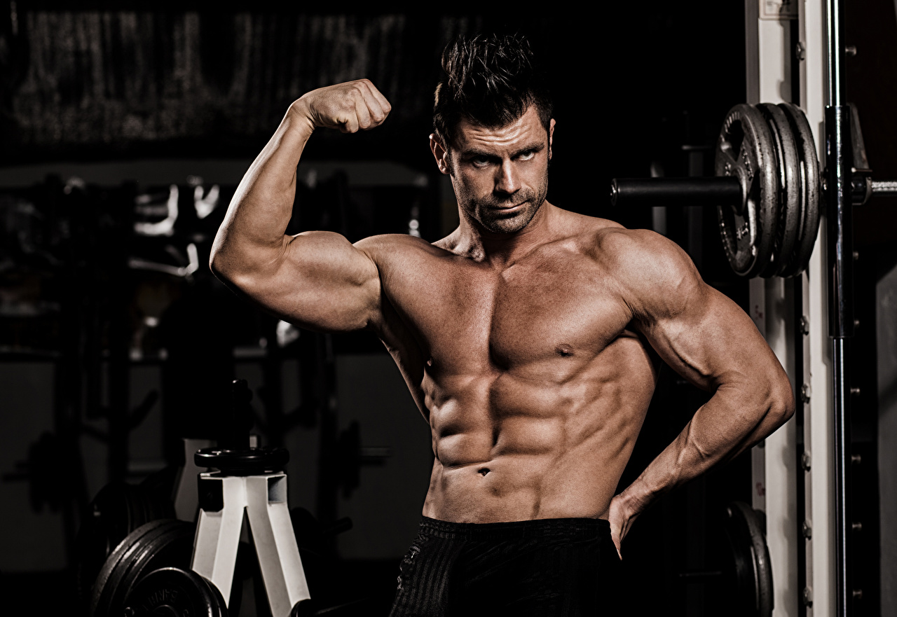 How to Pursue a Good Muscle Building Program