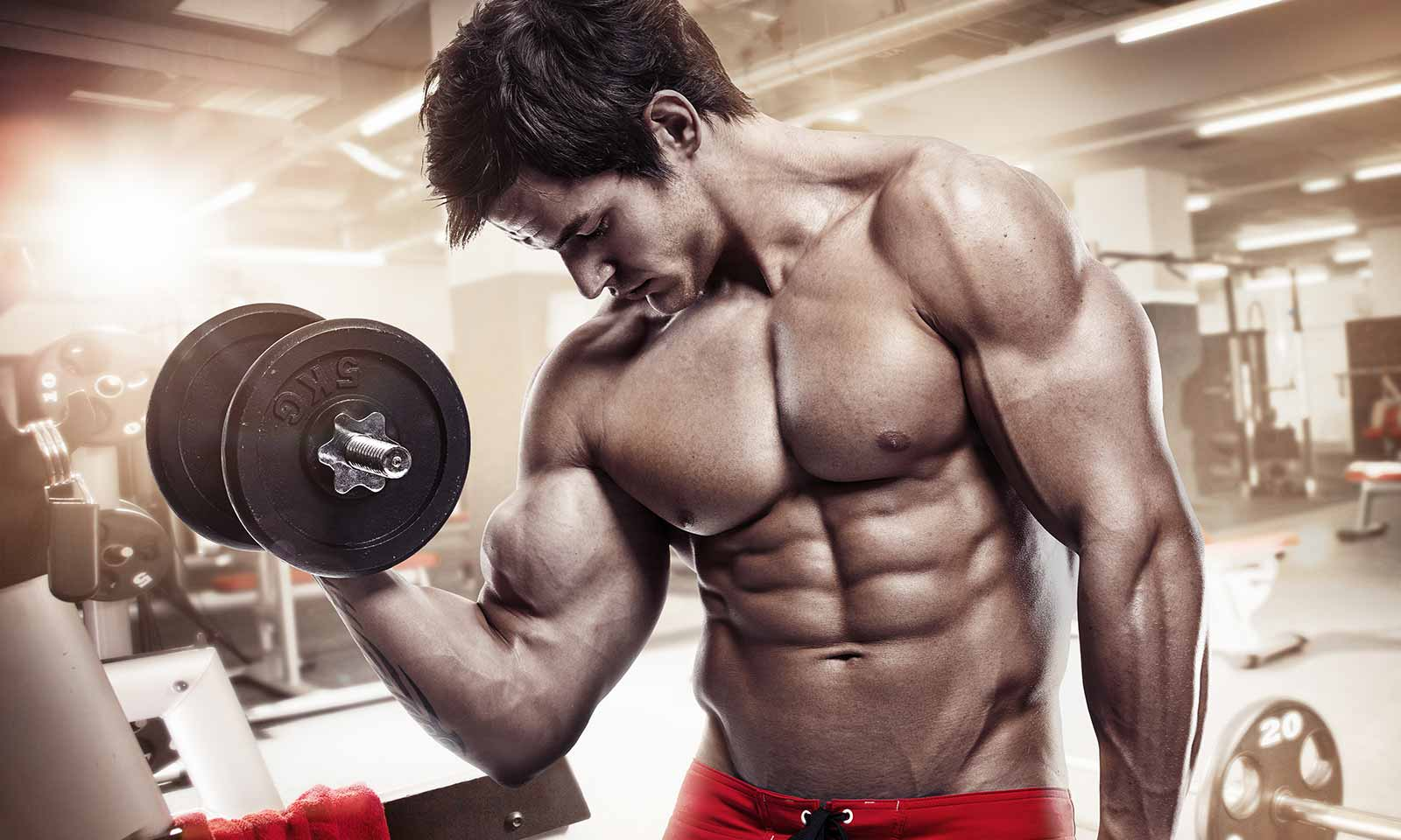 Nutritional Micro Cycles Leads to Building Stonger Muscles