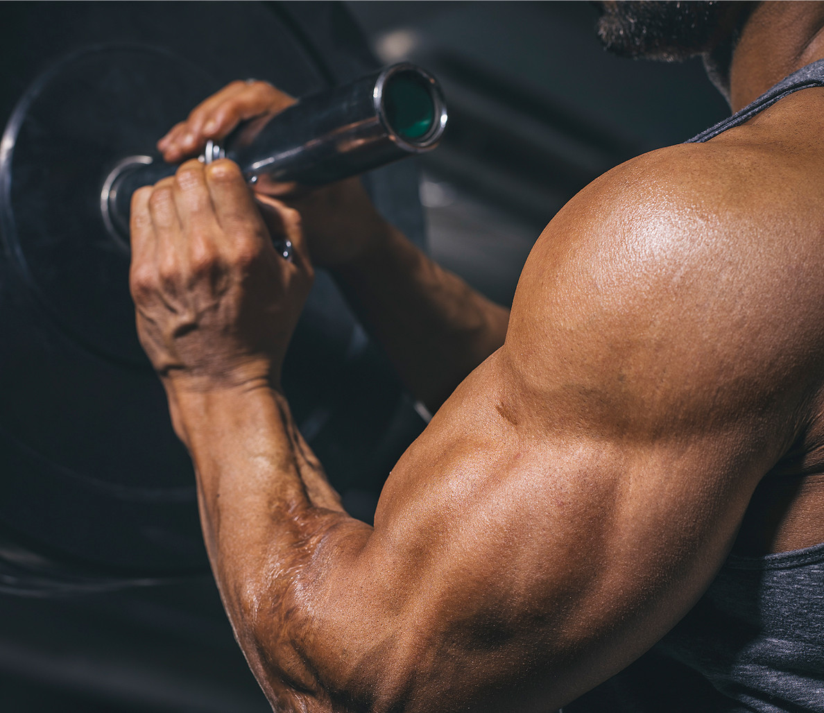 Online Nutrition Plan- Towards a Better Muscle Building