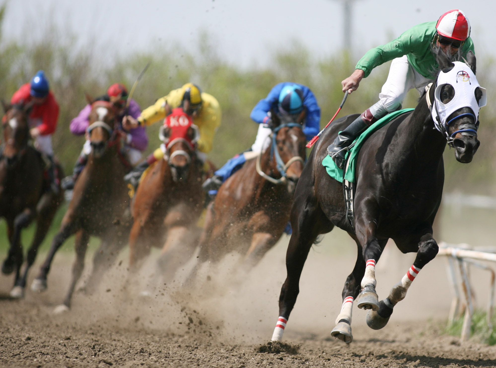 Owning a Race Horse is Possible with Horse Syndications
