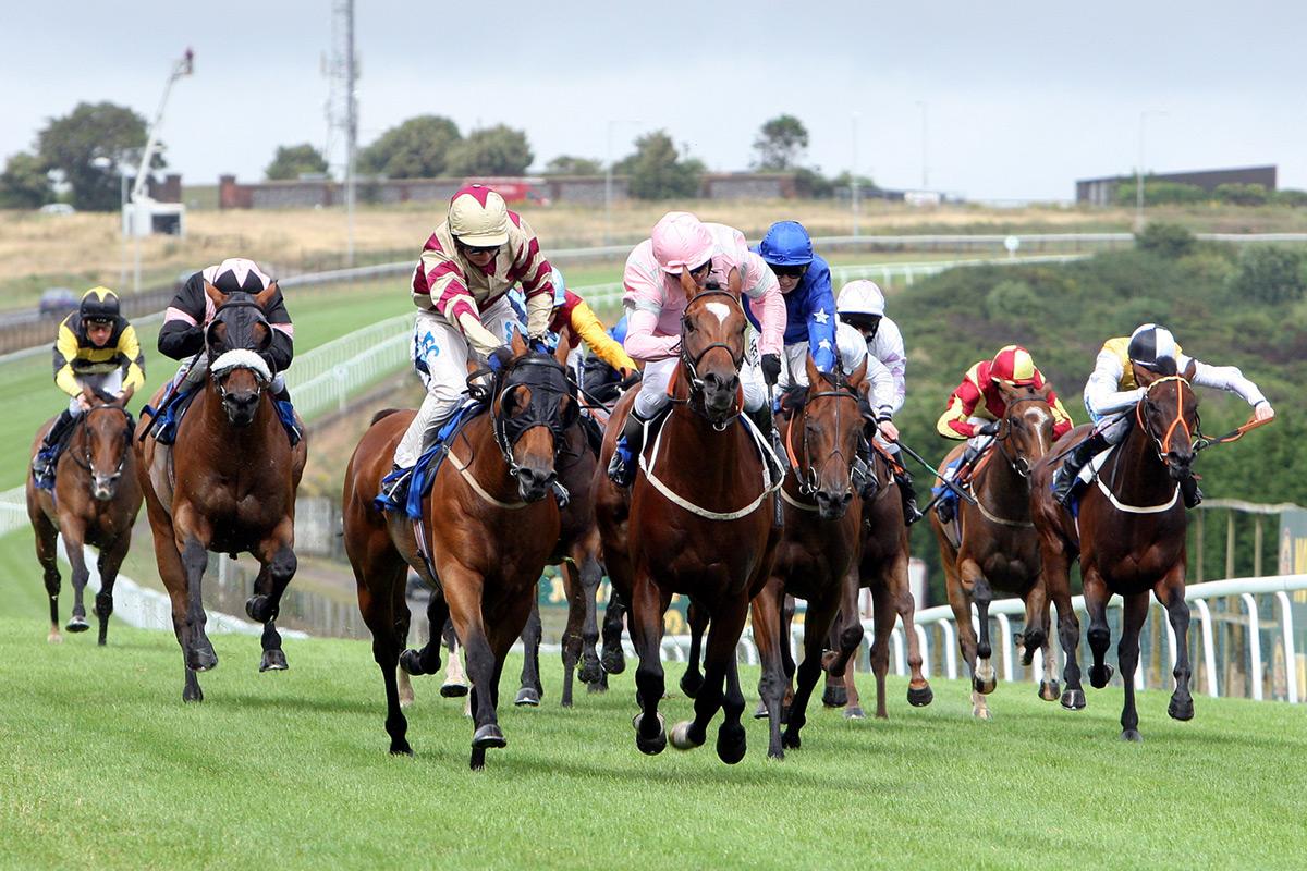 Setting Your Gamble in The Cheltenham Horse Racing Festivity
